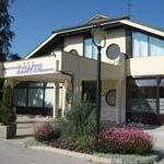 Dog Friendly Hotels in Celje