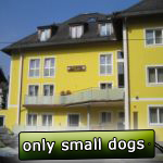 Family runned new hotel located directly in Salzubrg, only 1,5 km far from the exhibition venue. All rooms are equipped with bath/shower, toilet, TV, minibar, telephone and internet. Free parking possible. Only small dogs are allowed.  1,5 km Dog Show in Leeuwarden, distance 90 € EUR.